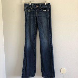 American Eagle Favorite Boyfriend Jeans Sz 2L